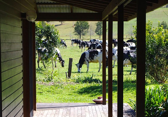 Berry NSW Rural Holiday House